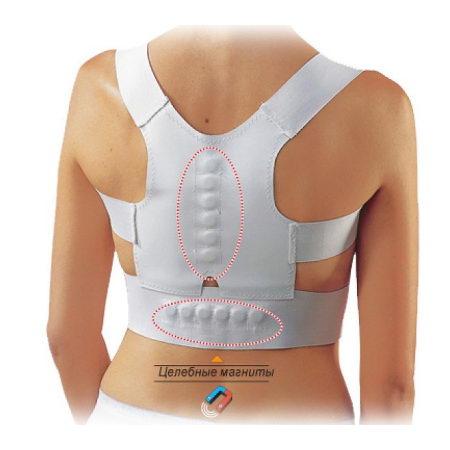 Магниты для выравнивания спины